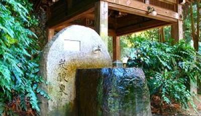 有馬温泉周辺食べ歩きグルメ